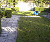 aerated-lawn
